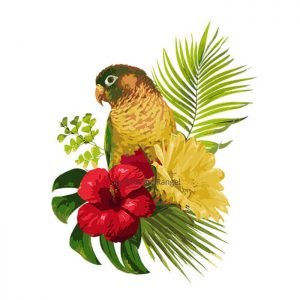 Tropical Bird