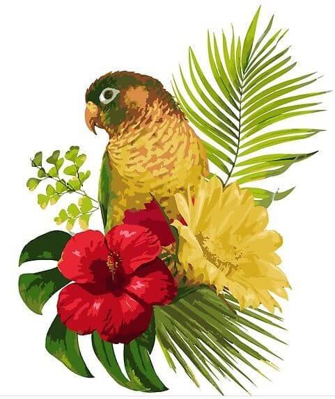 parrot-tropical